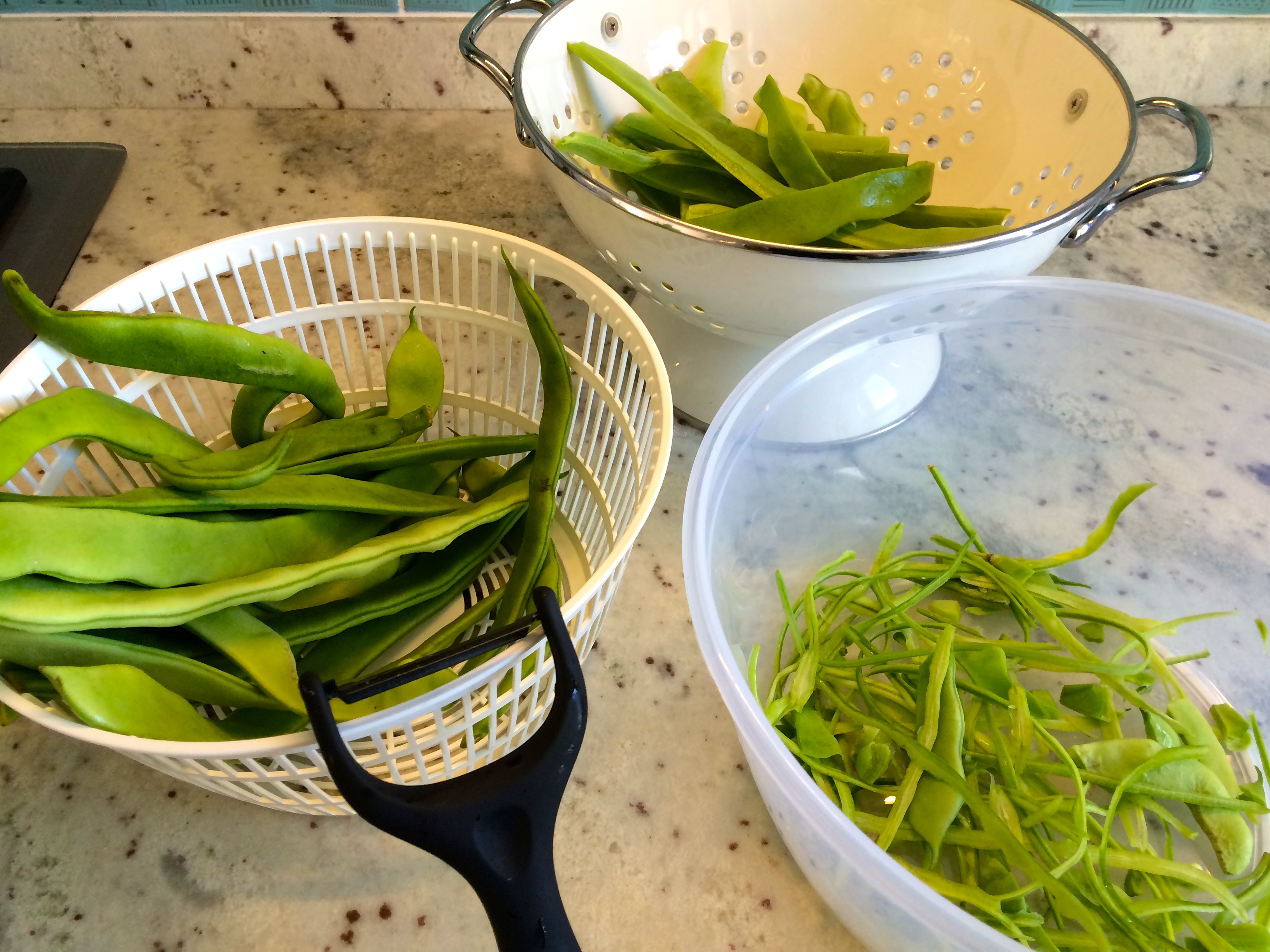 Green bean peeling station